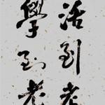 Illustration du profil de dragonkisss